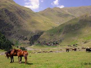 Vesnice Chesho