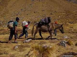 Trek Salkantay na Machu Picchu, Pampa Salkantay