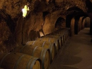 Vinné sklepy