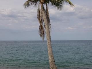 Pláže u vesnice Capurganá